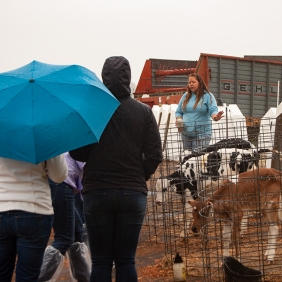 Tour led by Melissa Collman, fourth generation dairy farmer